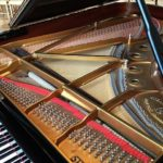 Discover why the Steinway grand piano is the favorite of the world's best pianists.